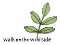 walkonthewildside�ʥե��å�����