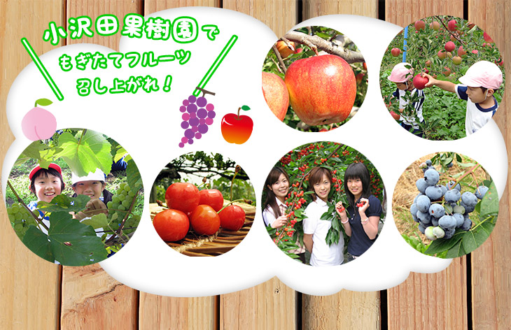 In Kosawada orchard, served freshly picked fruit