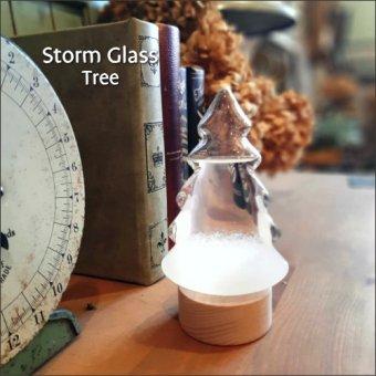 _ストームグラス<ツリー>ナチュラルでかわいいサイエンスインテリア(気象予報計)