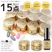 【PROP GELプロップジェル/15点セット(ベース、トップ、ノンワイプトップ、12色)/UV/ LED 対応/ネイリスト用/化粧品登録済み/有機溶剤不使用