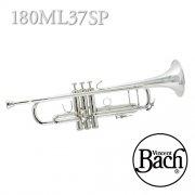 バック : B♭管トランペット 180ML 37ベル 銀メッキ(SP) モデル