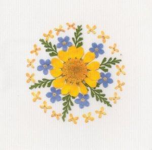 花柄(押し花)シール・ムルチコーレ