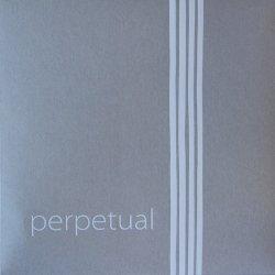 パーペチュアル チェロ弦 C線 ストロング