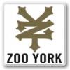 ZOO YORK ズーヨーク(Tシャツ)