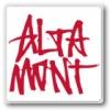 ALTAMONT オルタモント(Tシャツ)