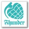 THUNDER TRUCKS サンダー(ステッカー)