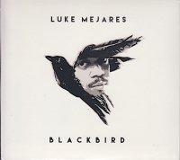Luke Mejares / Blackbird