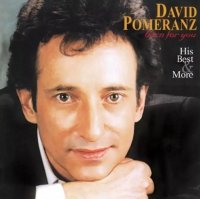 <img class='new_mark_img1' src='https://img.shop-pro.jp/img/new/icons25.gif' style='border:none;display:inline;margin:0px;padding:0px;width:auto;' />David Pomeranz / Born For You His Best & More (アナログ盤 / LP)