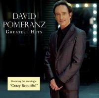 デイヴィッド・ポメランツ (David Pomeranz) / Greatest Hits