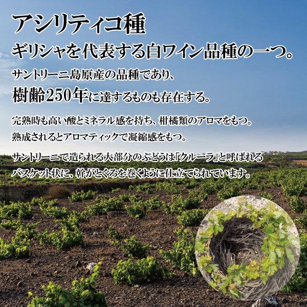 マタミス ハリリス スパークリングワイン (白)