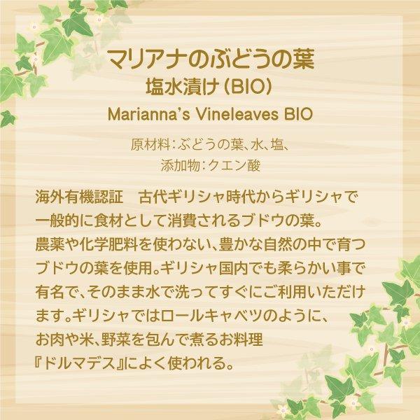 マリアナのぶどうの葉 塩水漬け(BIO)