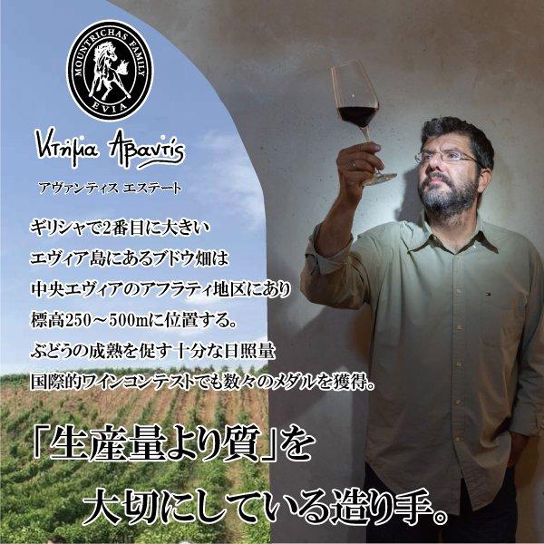 アヴァンティス レンガ'16 (白)