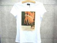 ドルチェ&ガッバーナ レディース DOLCE&GABBANA - D&G ディー&ジー プリントTシャツ ST0022 ホワイト ロゴドルガバ