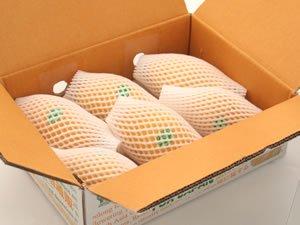 送料税込み!タイ産フレッシュマンゴー 小ケース(4〜6個入り:約1.8kg)