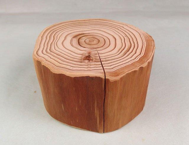ディスプレイ用:杉の天然絞り丸太