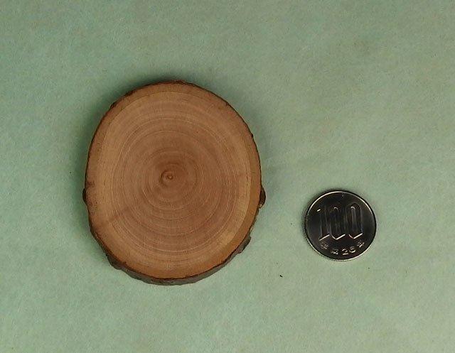 桜の木の輪切り板(大)