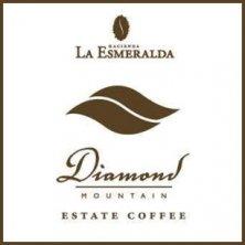 パナマ エスメラルダ ダイヤモンドマウンテン(2020年度産)
