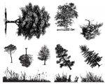 デザイナー・シルクスクリーン DSS-110 この樹なんの木