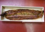 鰻蒲焼(小)