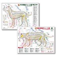 犬と猫の経絡(ツボ)チャート図ポスターセット