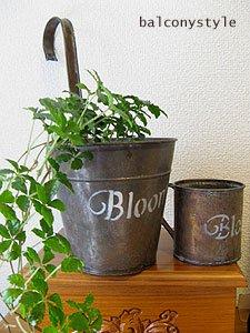 Bloomハンギング