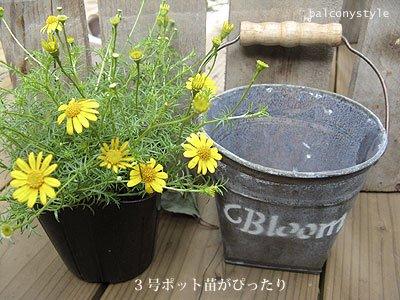 bloomバケツ3号ポット適合