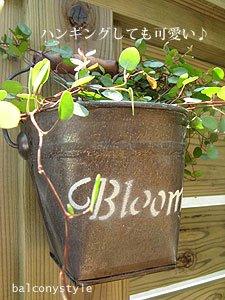 bloomバケツSハンギング