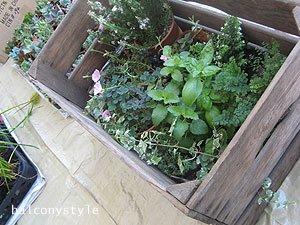 花屋さん風に木箱