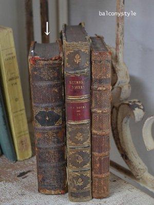 フランスのアンティークブック