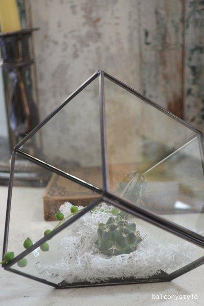 ガラステラリウムCUBE