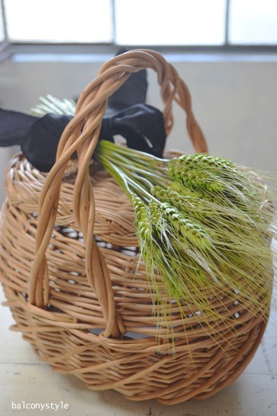 エピ リボンブーケ ドライフラワー2色麦の穂