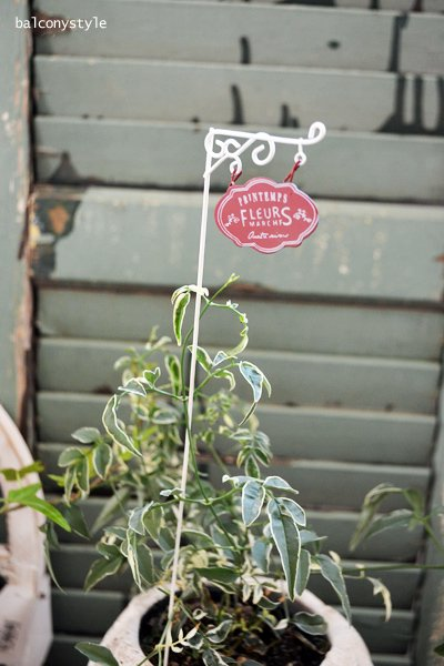 ガーデン雑貨ピック