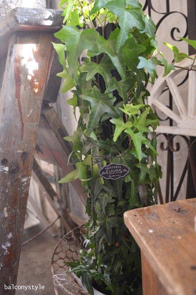 ガーデンピックフローリストパサージュピック2本セットガーデニング雑貨