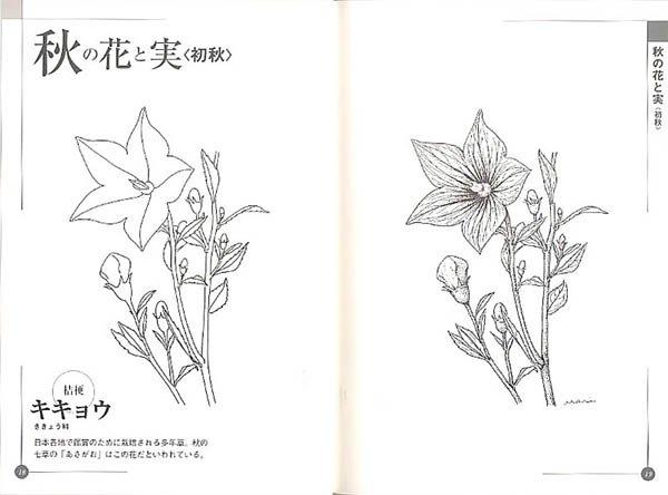 カレンダー カレンダー a5 : 花のポートレイト[秋・冬 ...