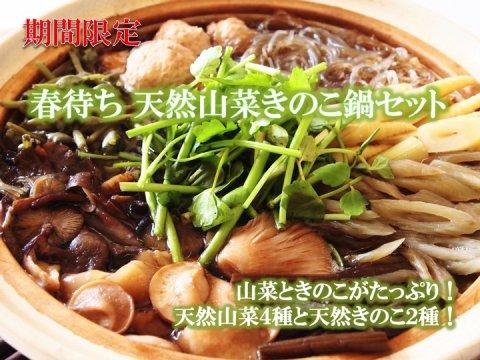 春待ち 天然山菜きのこ鍋セット