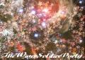 庭園ヨーガ倍音浴@殿ヶ谷戸庭園 ∵ TheWinerSolsticeParty ∵ 【満員御礼】