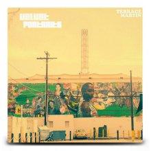 【CD・アルバム】TERRACE MARTIN /  VELVET PORTRAITS(国内盤)