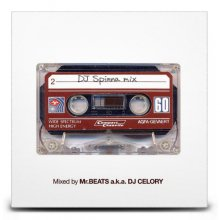 【DJSpinna/ベスト】MR.BEATS aka DJ CELORY / DJ Spinna Mix  (DJ セロリ)
