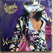 【USED】Rick James - Wonderful [ Jacket :  EX (シュリンク付き)  Vinyl : EX- ]