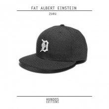 [8月上旬] FAT ALBERT EINSTEIN - 2U4U [LP]
