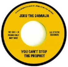 [11月上旬]JERU THE DAMAJA - YOU CAN'T STOP THE PROPHET [7inch]