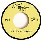 [12月上旬] SCHOOLLY D -  P.S.K. [WHAT DOES IT MEAN] (7inch)
