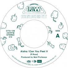 [12月中旬] Aisha - Can You Feel It / Can You Feel It (Instrumental)[7inch]<img class='new_mark_img2' src='//img.shop-pro.jp/img/new/icons14.gif' style='border:none;display:inline;margin:0px;padding:0px;width:auto;' />