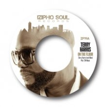 [12月下旬  Terry Harris - On The Floor / It Never Rains    [7inch]