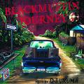 DJ Uruma / Black Muffin Journey 2013(DJウルマ)