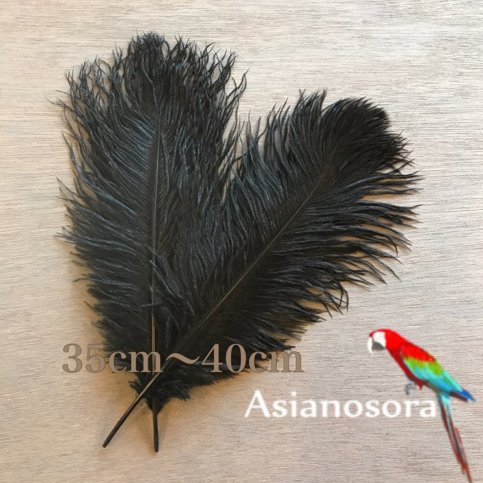 Ostrich feather 35-40