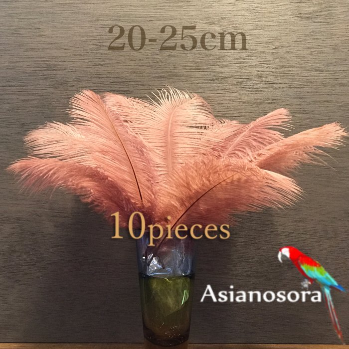 Ostrich feather 20-25