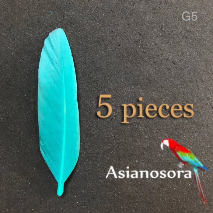 【G5】Goose feather normal