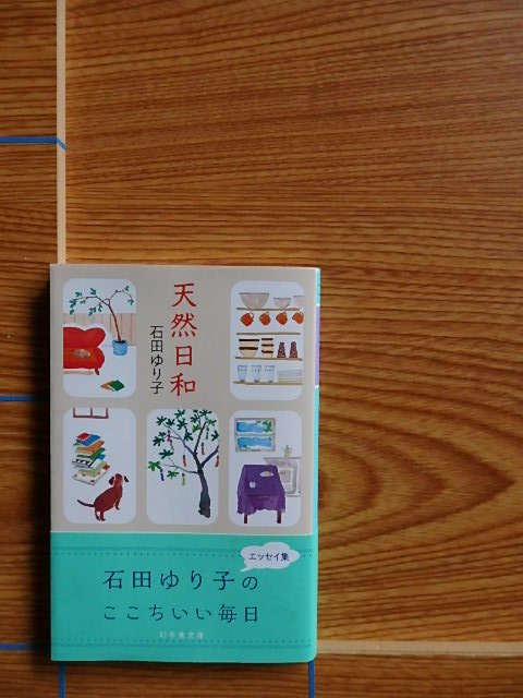 石田ゆり子 天然日和 文庫/L28