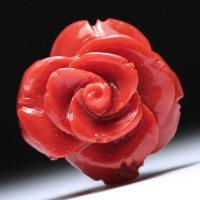 【初登場】「トゥルコの薔薇」サンゴカメオルース 作家ジョヴァンニ・トゥルコ